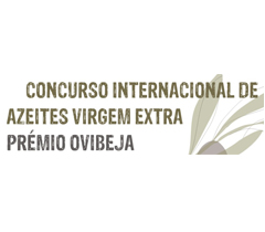 Concurso Internacional de Beja 2011